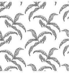 seamless pattern with peonies leaves vector image