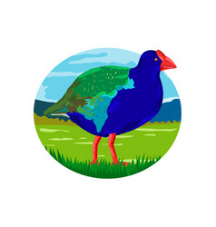 South island takahe bird oval retro vector