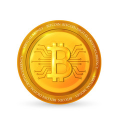 bitcoinbusiness virtual money vector image