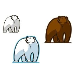 Polar and brown bear vector image vector image