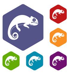 Chameleon icons set vector