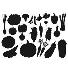 Silhouette icons organic farm vegetables vector