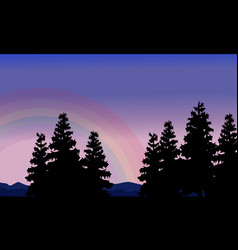 silhouette of spruce and rainbow scenery vector image