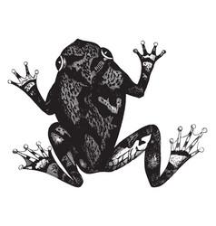 Squirrel tree toad vintage vector