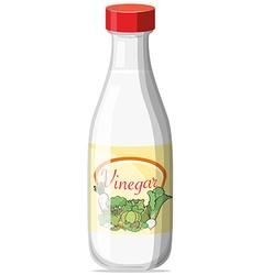 Vinegar vector
