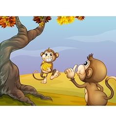 Two monkeys beside the big tree vector image vector image