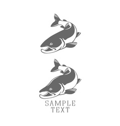 icons salmon vector image vector image