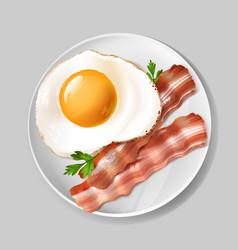 3d realistic english breakfast - bacon egg vector