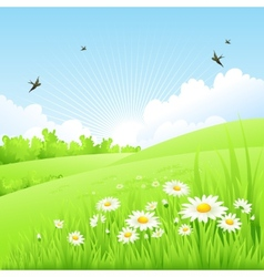 Clean spring amazing scenery vector