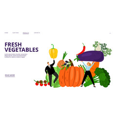 fresh vegetables landing page people vector image