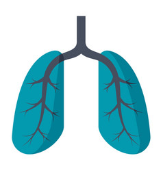 Lungs medical icon vector
