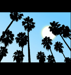 sky palm vector image
