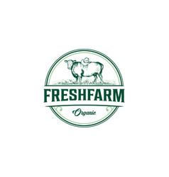 vintage angus cow farm logo graphic design vector image