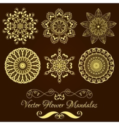 Set from Gold Floral Mandala over dark vector image vector image