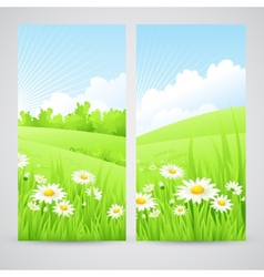 Clean spring amazing scenery vector image
