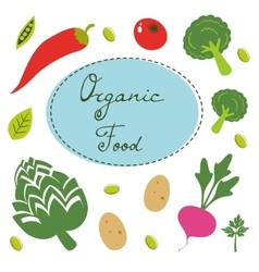 Colorful organic food collection vector image