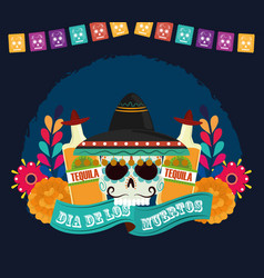 day dead skull with hat tequila bottles vector image