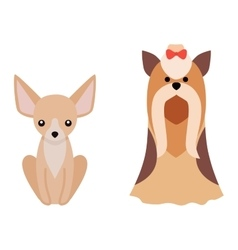 Flat dog pet sitting cute vector image