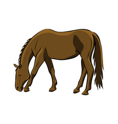 hand drawn brown horse vector image