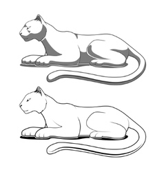 Panther emblem vector image