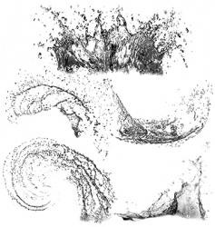 splashes of water vector image vector image