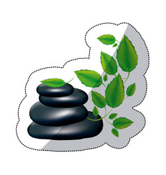 spa volcanic rocks with branches and leaves vector image