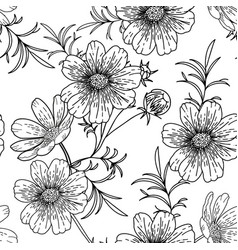 black and white cosmos flower seamless pattern vector image