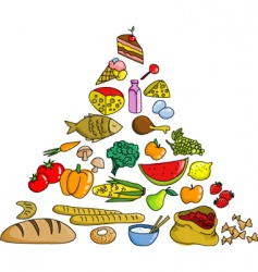 food pyramid icons vector image
