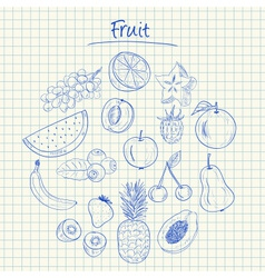 Fruit doodles squared paper vector
