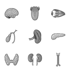 Human organs set icons in monochrome style Big vector