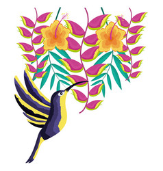 hummingbird bird flowers tropical vector image