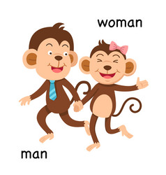 opposite man and woman vector image