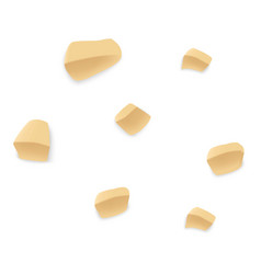 small pieces of peanut icon realistic style vector image