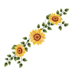 Spring sunflower drawinf with leaves vector