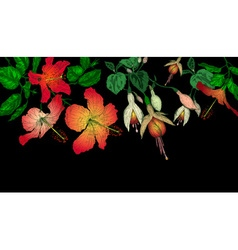 Hibiscus and Fuschia Flowers on a Dark Background vector image vector image