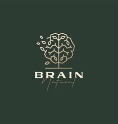 brain tree smart natural leaf sophisticated vector image