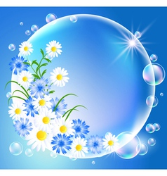 Bubbles with flowers vector