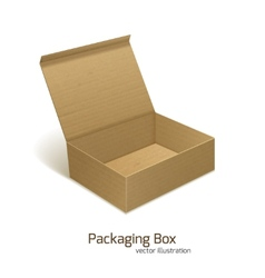 Paper packaging box vector image