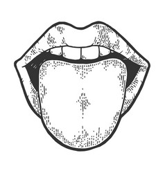 tongue showing from mouth sketch engraving vector image
