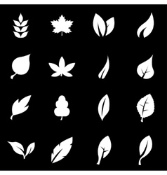 white leaf icon set vector image