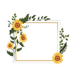 Card with exotic sunflowers plants and branches vector