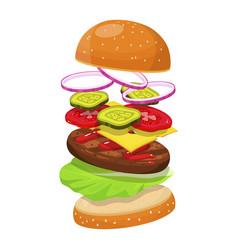 hamburger ingredients image vector image