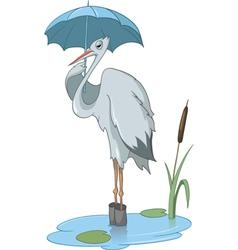 pelican cartoon vector image