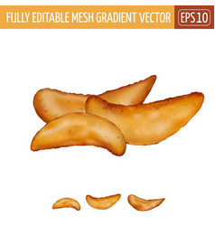 Potatoes rustic on white background vector