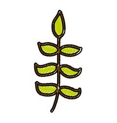 scribble bush cartoon vector image