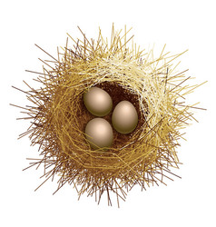 birds nest with eggs top view vector image