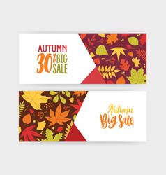 bundle of autumn banner discount voucher or vector image