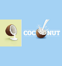 Coconut milk splash vector