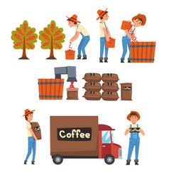 coffee industry production stages set farmers vector image