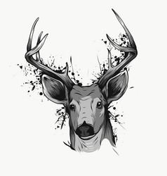 Deer head on white hand drawn vintage vector